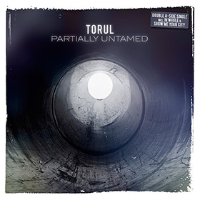 Torul-Partially-Untamed-__-Booklet-1